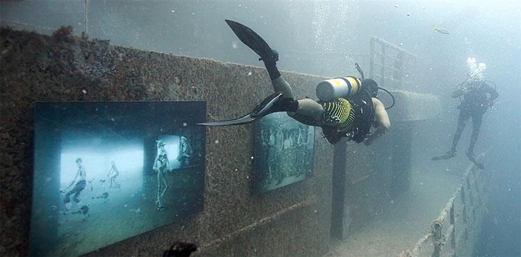 Underwater Photo Exhibit Displayed on Artificial Reef in Florida Keys