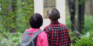 Outdoor Exhibition Shows Latest from Zeng Mi