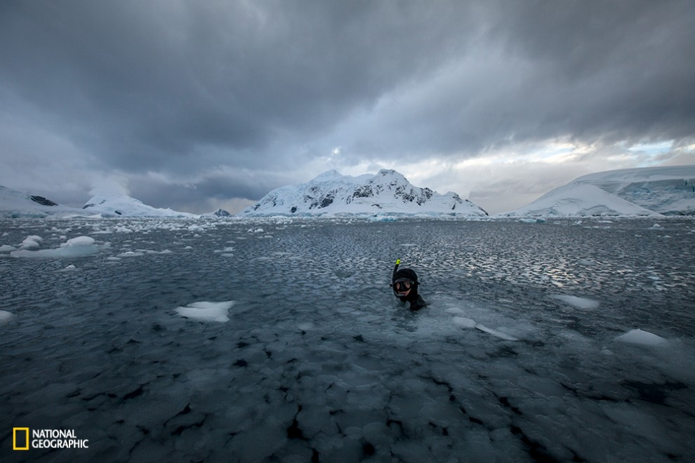 Freediving session in Antarctica...not even cold!