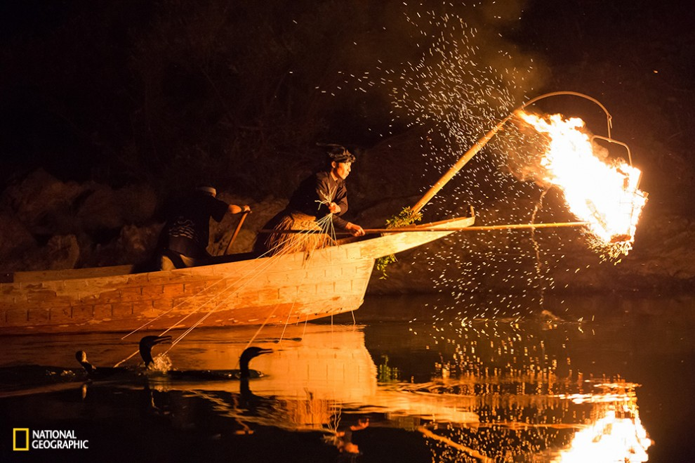 Ukai Japan has a history of more than 1300, it is one of the traditional fishing method that has been done in countries such as China.People use cormorants to catch fish in the light of the lamp bonfire.