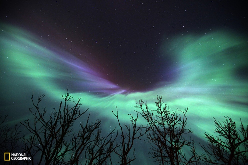 Stunning northern lights show in Estonia. I have never seen such spectacular show before. It is not everyday event to see northern lights in Estonia especially so mighty ones. This photo reminds me an angel with wings widely spread. Certainly there are some greater powers than human can imagine.