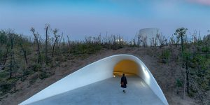 This Cave-Like Art Gallery Has Been Built Inside A Sand Dune