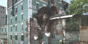 """""""Cats And The City"""": Russian Artist Imagines A World Where Humans Live Among Giant Cats"""