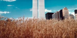 The Twin Towers During The 1970s And Early '80s Through Fascinating Photos