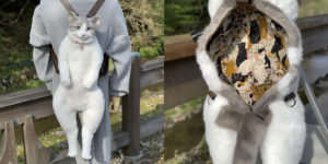 Cat Backpack That Looks Like a Real Live Cat