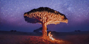 Russian Photographer Captured Wonderful Photos While Visiting The Extraordinary Socotra Island