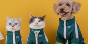 """Finally, """"Squid Game"""" Costumes For Your Pets"""